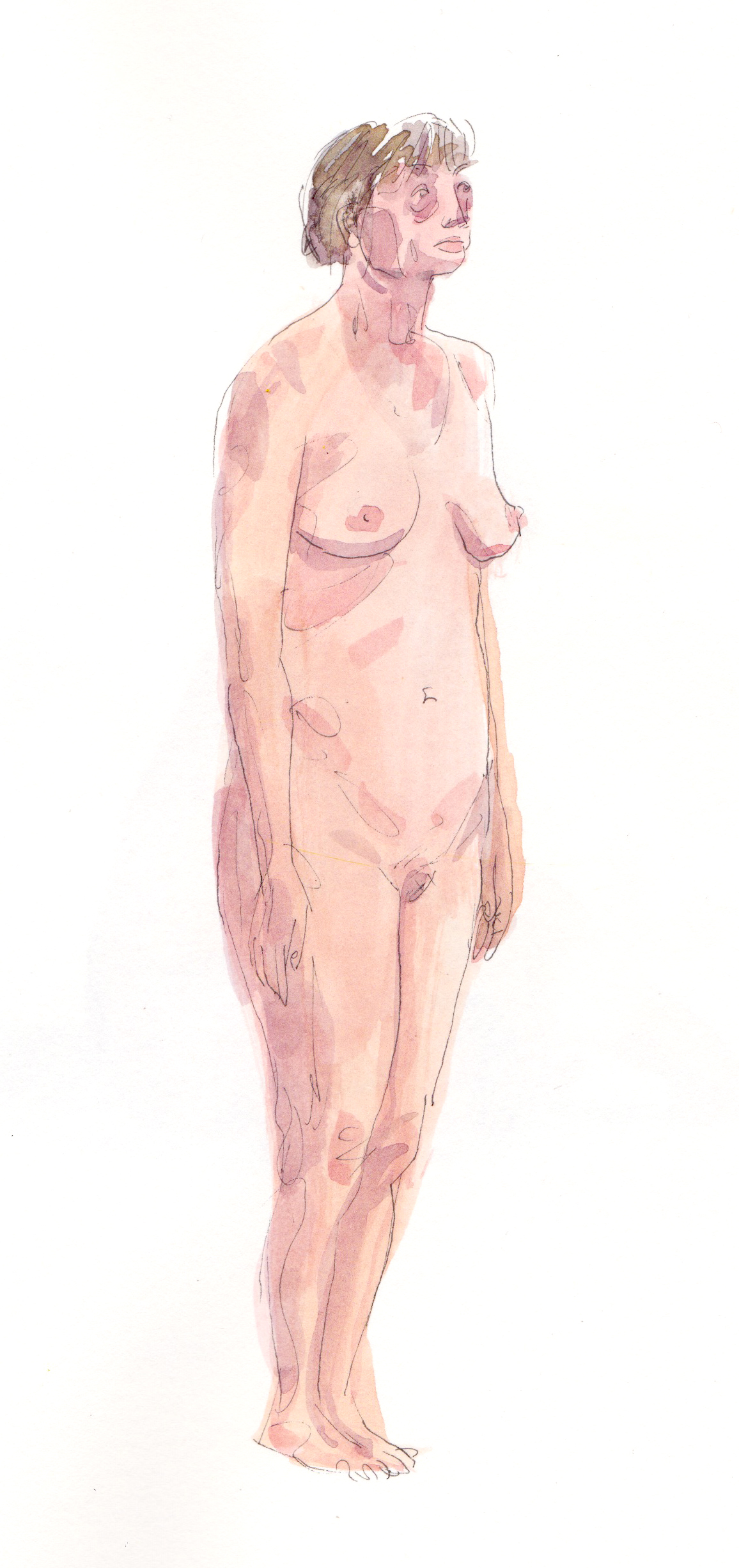 lifedrawing 12